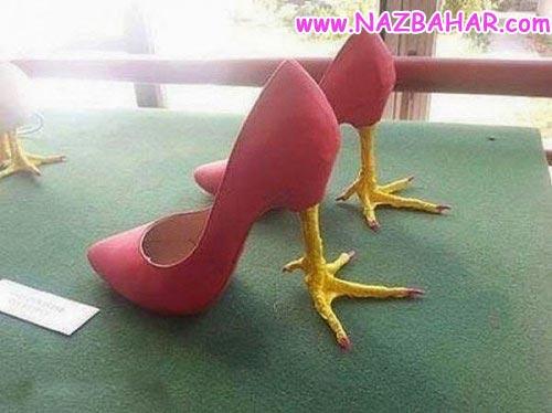 پا مرغی که میگن اینه,عکس های خنده دار و طنز جدید آذر ۹۲